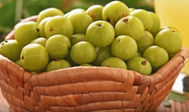 Benefits Of Amla For Skin And How To Use - Boldsky com