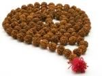 Rudraksha Benefits Hinduism