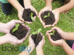 How To Make Soil Naturally Fertile
