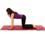 Siz Benefits Of Cat Pose In Yoga