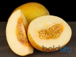 Simple Ways To Lose Weight With Musk Melon