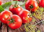 Tips To Maximize Tomato Yield