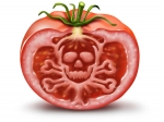 Eleven Most Banned Toxic Ingredients In Food