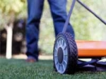 Lawn Care Tips And Suggestions