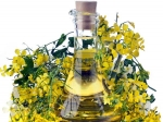 Why Mustard Oil Is Good For You In Winter