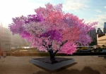 A Magical Tree Produces 40 Different Types Of Fruits