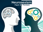 Neurosexism: Is It True That Men And Women Have Different Brains?