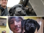 Man Born Deaf Adopts Deaf Puppy And Teaches Him Sign Language
