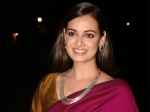 Dia Mirza Looks Radiant In Her Pink And Golden Colour-Blocked Silk Sari