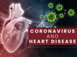 Coronavirus And Heart Disease: What You Need To Know?