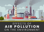World Environment Day: Harmful Effects Of Air Pollution On The Environment