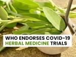COVID-19: WHO Promotes Coronavirus Herbal Medicine Trials