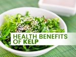 Kelp: Nutrition, Health Benefits And How To Eat