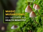 Magic Mushrooms: Do They Have Any Health Benefits?