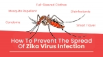 How To Prevent The Spread Of Zika Virus Infection