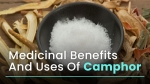 What Is Camphor? Medicinal Benefits, Uses And Side Effects