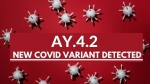 New Delta Plus Variant AY.4.2: Is Vaccine Effective Against It? Everything You Need To Know