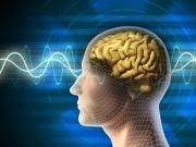 Brain Activity Predicts Risk Of Falls