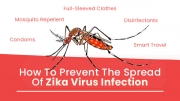 Prevention Of Zika Virus Infection