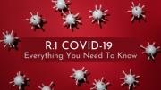 R.1 COVID-19 Variant