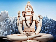 Understanding The Meaning Of Shiva's 8 Adornments