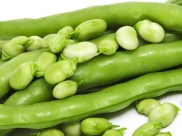 8 Wonderful Health Benefits Of Lima Beans You Never Knew