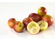 Lesser Known Health Benefits Of Camu Camu, Nutrition And Vegan Recipes