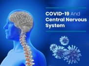 Can Coronavirus Cause Damage to The Central Nervous System?