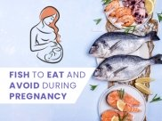 Pregnancy Seafood Guide: Fish To Eat And Avoid During Pregnancy