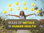 Essential Metals And Their Roles In Human Health