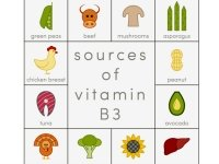 Facts About Vitamin B3