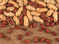 Why Snacking On Peanuts Is Healthy?