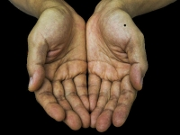 Meaning Of Moles Present On Your Palms