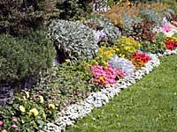 Essential Outdoor Gardening Tips Boldskycom