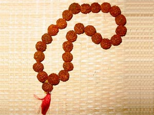 Rudraksha Beads Benefits-14 to 21 Mukhis