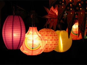 Diwali decoration decorating garden with lights Home decoration lights online india