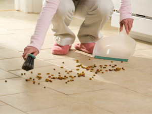 Tips To Keep Home Pets Clean