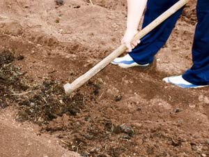 How To Prepare Soil For Your Garden?