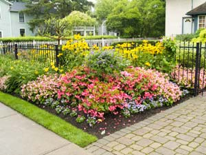 How To Maintain A Flower Garden?