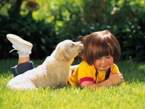 Pet Care Tips For Puppies