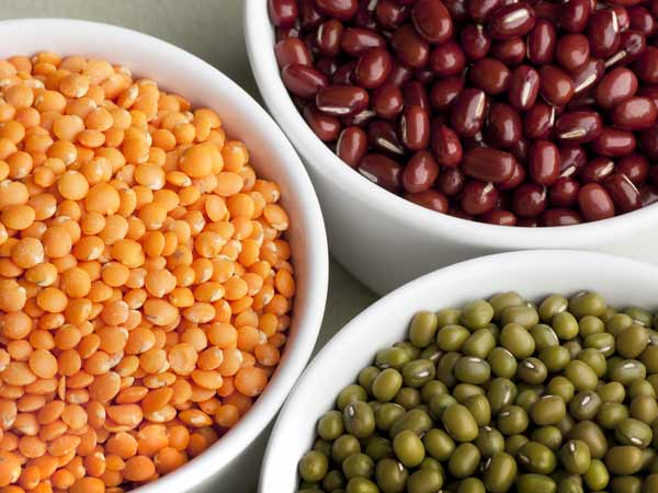 Lentils And Kidney Beans