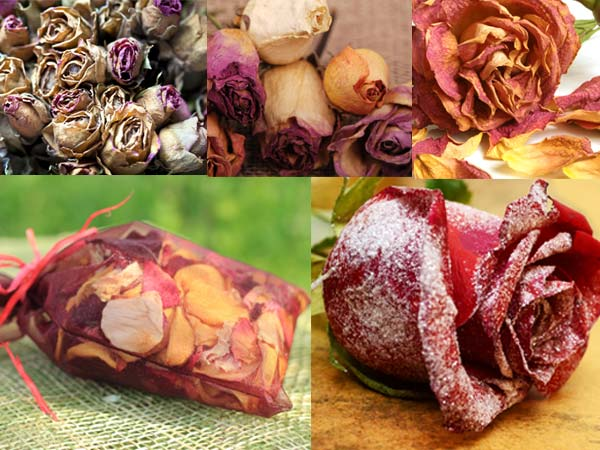 Uses Of Dry Rose Petals In Home - Boldsky com