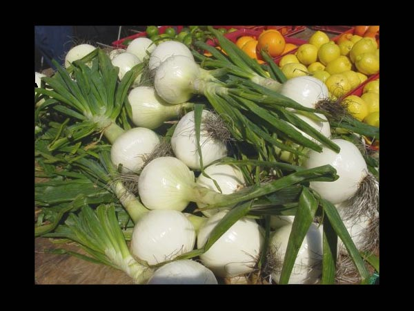 Sweet Onions & Its Health Benefits