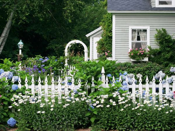Garden Ideas 2013 fence gardening ideas for winter - boldsky