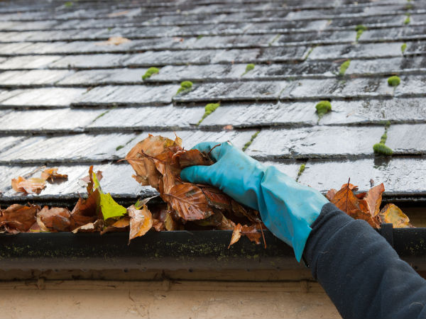 how to clean your roof