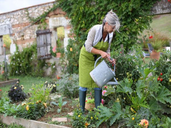 Delightful Prepare Garden For Summer   Summer Gardening   Prepare Garden Soil