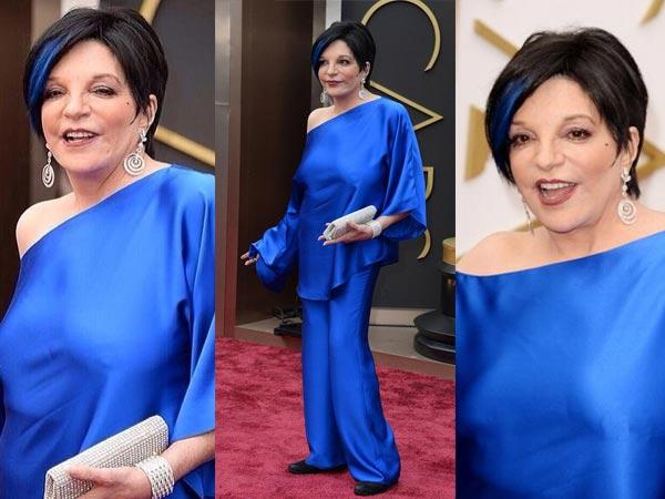 Oscars 2014 Red Carpet: Nip Slip Show