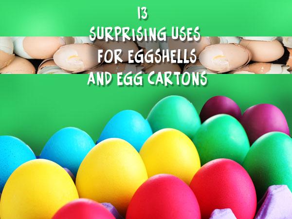 13 Uses For Eggshells And Egg Cartons