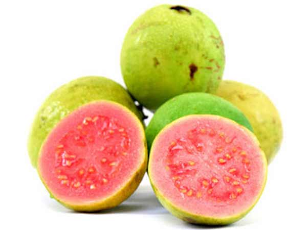 10 benefits of guava during pregnancy boldsky ccuart Image collections