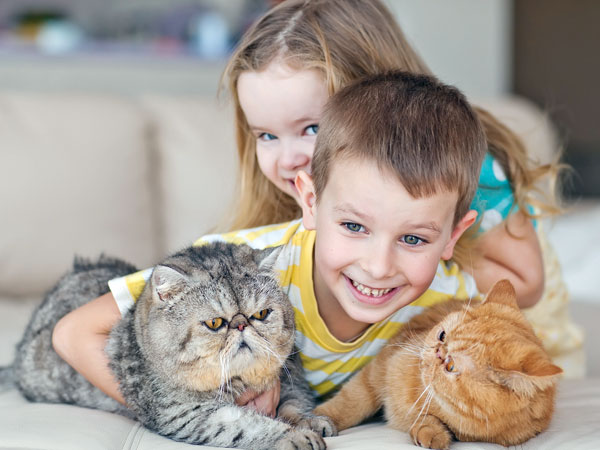 How Pet Improves Your Health